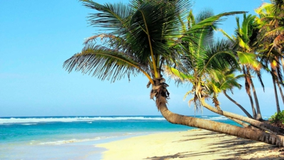 Idyllic Beaches And Spectacular Snorkelling